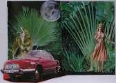 Lucie Ferliková, Red Karkulka, collage, 32x45cm, 2007