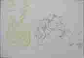 Lucie Ferliková, Ze série Ananasový pierot, tužka, propiska, fix na papíře, 21x29,5cm, 2006