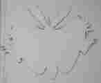 Lucie Ferliková, Z dipl. práce Amalgam: Bílá orlice - zajíc, překližka, akryl, 127x105cm, 2005