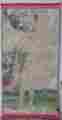 Lucie Ferliková, Z dipl. práce Amalgam: Veselý ptáčník / Gobelín, akryl na papíře, páska, 210x110cm, 2005