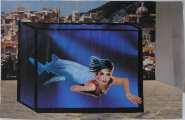 Lucie Ferliková, Sea Siren, collage, 31x48,2cm, 2007