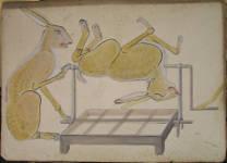 Lucie Ferliková, Z cyklu názorné výuky č.2, akryl na kartonu, 101x72,5cm, 2008